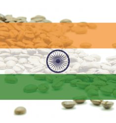 "Káva India Plantation AA ""Bababudangiri"" - 100% arabika"