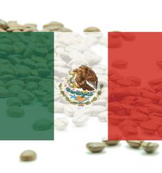 "Káva Mexico Altura EP Chiapas ""El Aguila"" - 100% arabika"