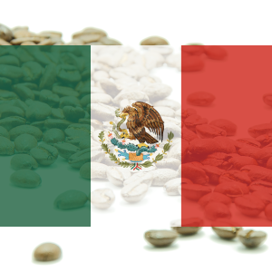 KÁVA MEXIKO - Finca Las Chicharras School project - 100% arabika