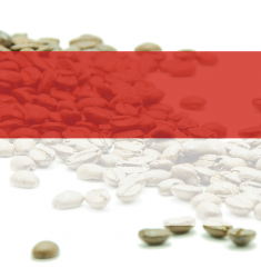 "Káva Indonesia - Sumatra TP ELB Gr.1 ""Blue Tawar""  - 100% arabika"