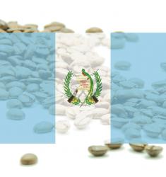 "Káva Guatemala SHB,E.P. Huehuetenango ""Finca El Coyegual""  -100% arabika"