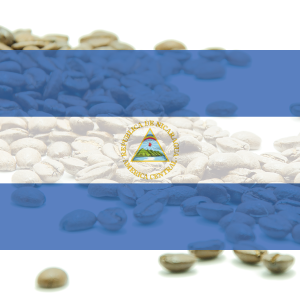 KÁVA NIKARAGUA - SHG  EP 'Flor Silvestre' Nueva Segovia - 100% arabika