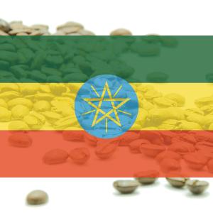 KÁVA ETIÓPIA - Sidamo Gr.2 - 100% arabika